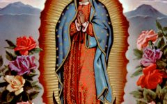 Alternate Text Not Supplied for guadalupe-16.